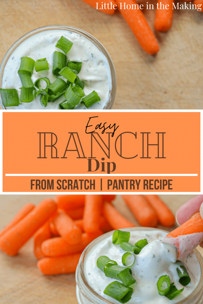 Try this delicious Easy Ranch Dip with some veggies or tossed with a salad. Made from pantry ingredients!