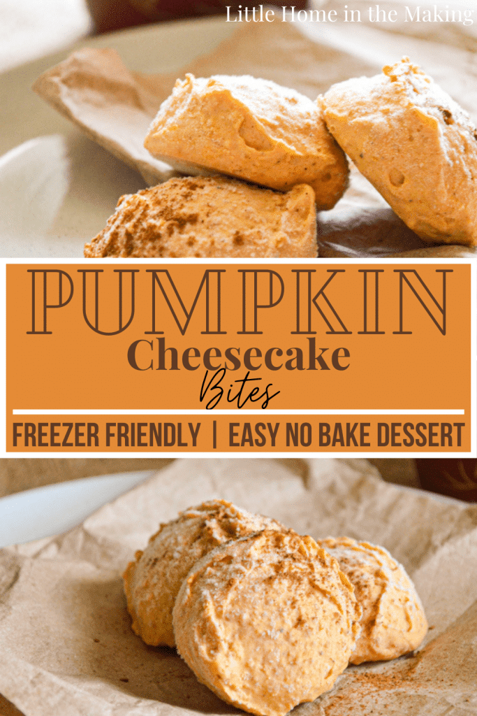 You just have to love how easy this no bake dessert is! Canned pumpkin, pumpkin spice, and cream cheese all combine to make a delicious Pumpkin Pie Cheesecake Bite! These are freezer friendly and so easy to whip up.