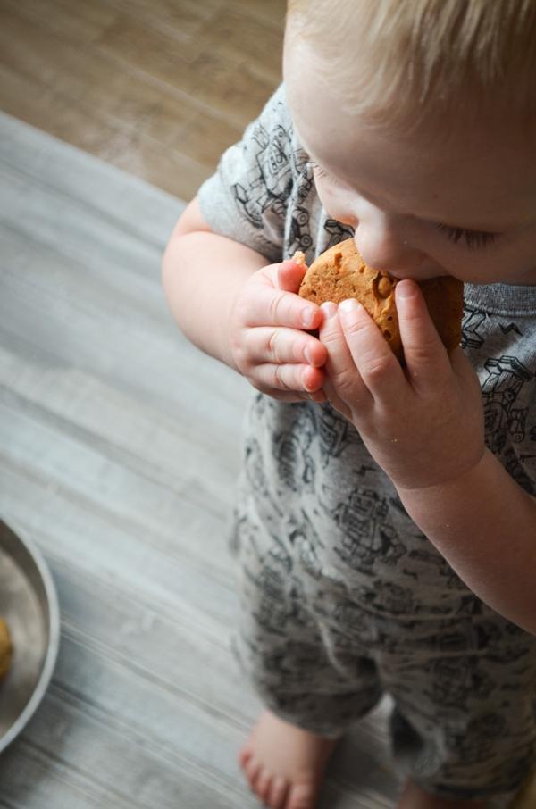 A toddler enjoys a big bite of Apple Walnut Sourdough Discard Muffin.
