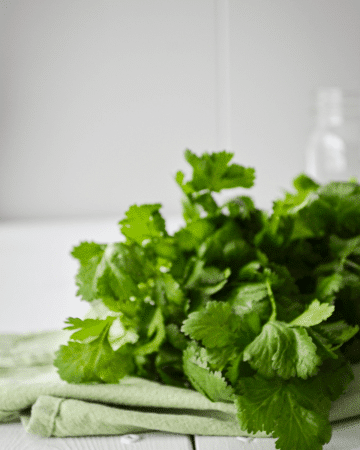 A bunch of cilantro laying on a white table.