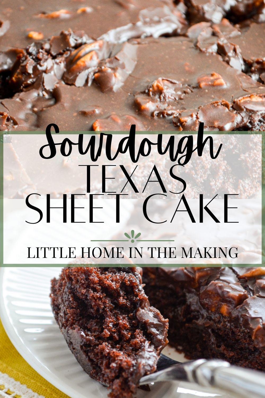 Sourdough Texas Sheet Cake